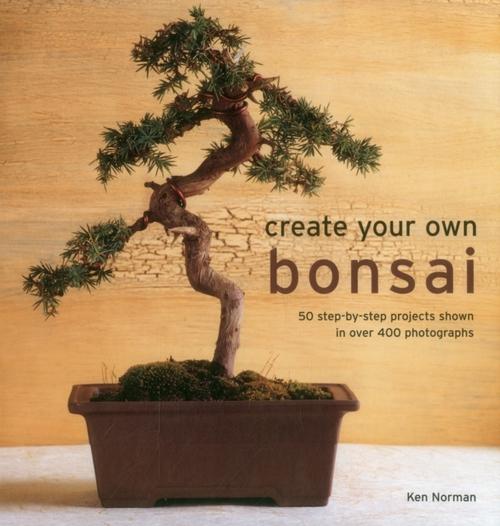 Afbeelding van Create Your Own Bonsai