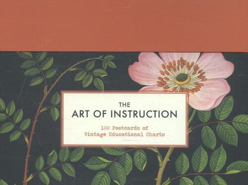 Afbeelding van Art Of Instruction 100 Postcards