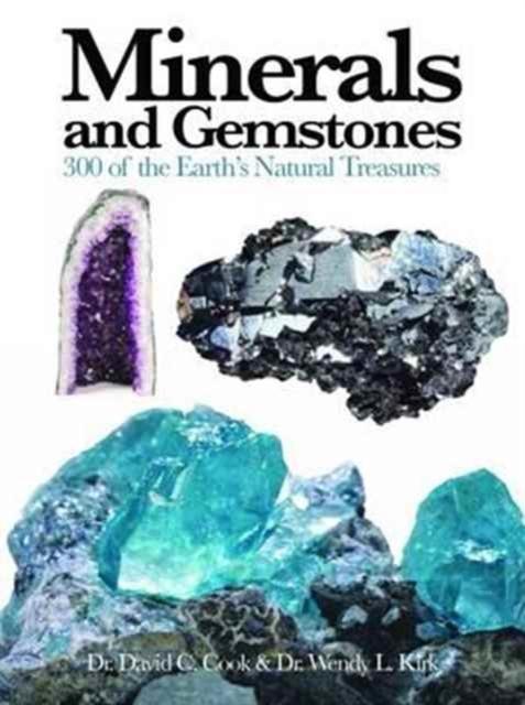 Afbeelding van Minerals and Gemstones
