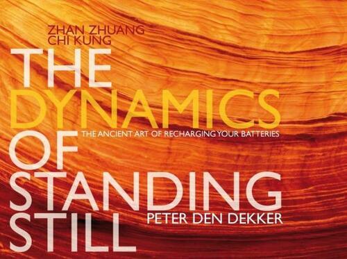 Afbeelding van The dynamics of standing still