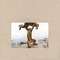 Dude Incredible-Shellac-CD