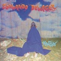 Sonhando Devagar-Kassin-LP