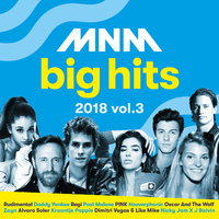 Various Artists - MNM Big Hits 2018.3--CD