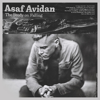 The Study On Falling-Asaf Avidan-CD