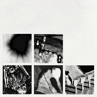 Bad Witch-Nine Inch Nails-LP