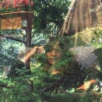 Angels Of Death-Jennifer Castle-LP