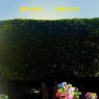 Time Of Joy-Dim Peaks-LP
