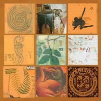 All My Friends Are Funeral Singers-Califone-LP