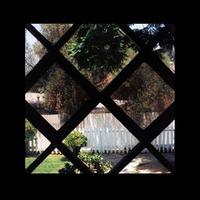 III-Psychic Temple-LP