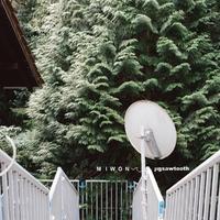 Jigsawtooth-Miwon-CD