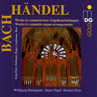 Organ Works In Romantic Arrangement-Wolfgang Baumgratz-CD