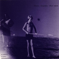 An Audience Of Others-Flies Inside The Sun-CD
