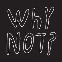 Why Not?-Half Japanese-LP