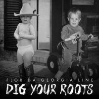 Dig Your Roots-Florida Georgia Line-CD