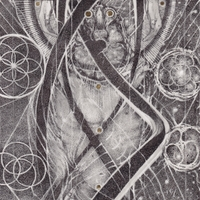 Uroboric Forms - The Complete-Cynic-CD