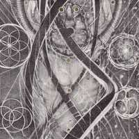 Uroboric Forms - The Complete-Cynic-LP