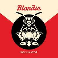 Pollinator-Blondie-CD