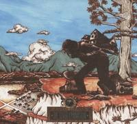 The Silver Gymnasium-Okkervil River-CD