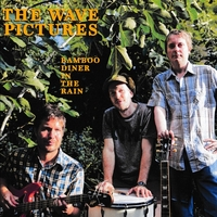 Bamboo Diner In The Rain-The Wave Pictures-LP