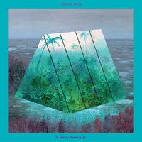 In The Rainbow Rain-Okkervil River-LP