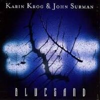 Bluesand-Karin Krog-CD