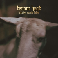 Thunder On The Fields-Demon Head-LP