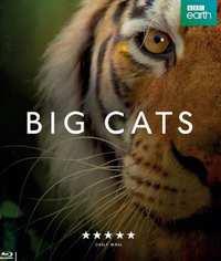 Big Cats - Seizoen 1-Blu-Ray