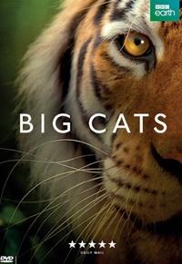 Big Cats - Seizoen 1-DVD