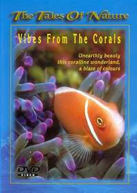 Vibes From The Corals-DVD