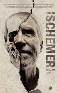 Schemer-William Gay