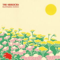 Happiness Hours-The Sidekicks-CD
