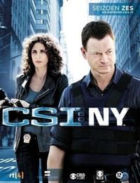 Csi New York Seizoen 6/2-DVD