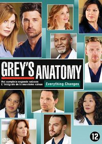 Grey's Anatomy - Seizoen 9-DVD
