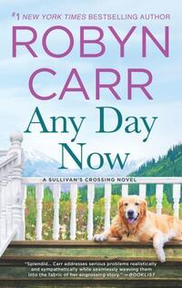 Any Day Now-Robyn Carr