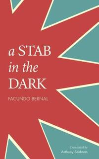 A Stab in the Dark-Facundo Bernal