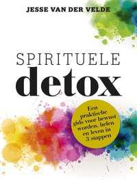 Spirituele detox-Jesse van der Velde