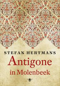 Antigone in Molenbeek-Stefan Hertmans-eBook