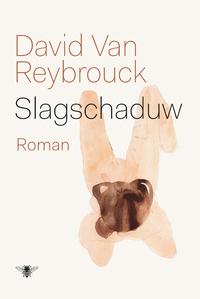 Slagschaduw-David van Reybrouck
