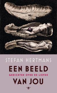 Een beeld van jou-Stefan Hertmans-eBook