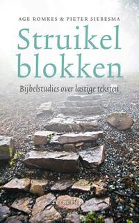 Struikelblokken-Age Romkes, Pieter Siebesma