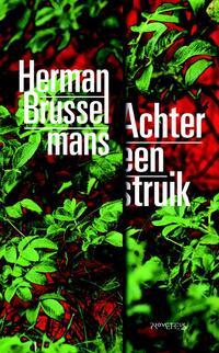 Achter een struik-Herman Brusselmans