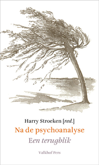 Na de psychoanalyse. een terugblik-Harry Stroeken