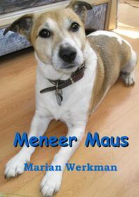 Meneer maus-Marian Werkman-eBook
