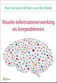 Visuele informatieverwerking en leerproblemen-Hans van den Brink, Roel de Groot