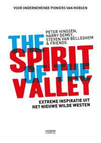 The spirit of the valley-Harry Demey, Peter Hinssen, Steven van Belleghem-eBook