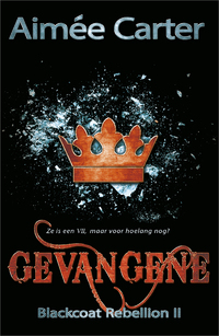 Gevangene-Aimée Carter-eBook