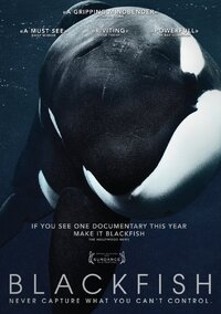 Blackfish-DVD